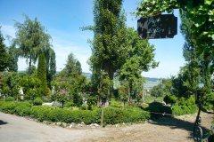 2011_GartenStille33